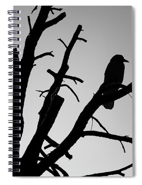 Raven Tree II Bw Spiral Notebook