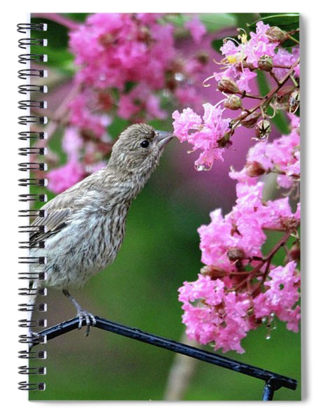 Reach For It Spiral Notebook