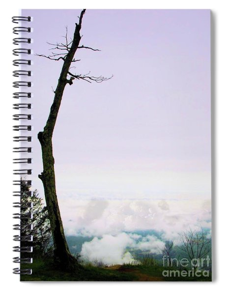 Reaching In The Shenandoah Spiral Notebook
