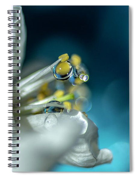 Reaching Into The Blue Spiral Notebook
