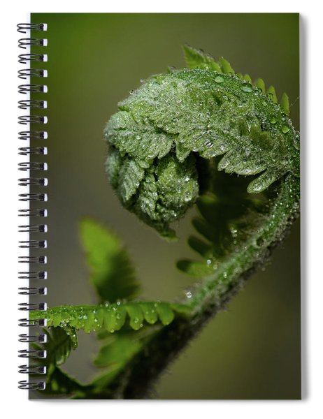Reaching Out Spiral Notebook