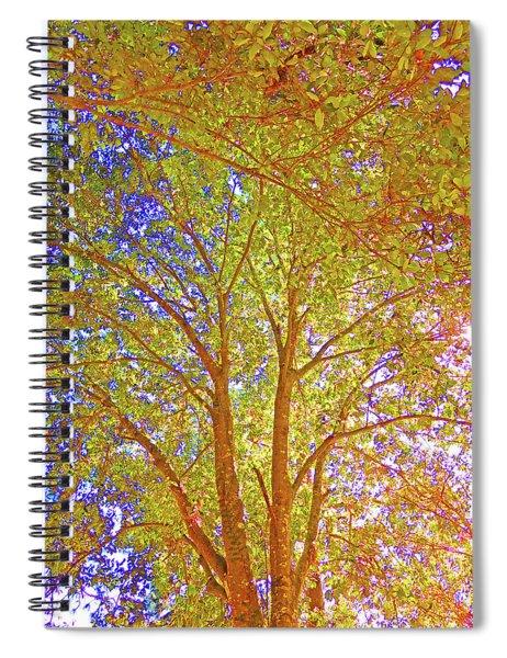 Reaching Skyward In The Bright Sunshine Spiral Notebook