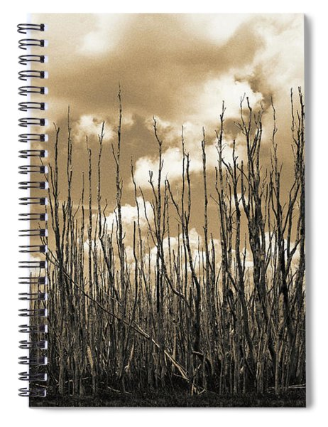 Reaching To The Sky Spiral Notebook