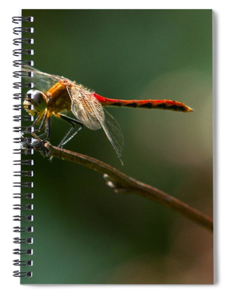 Ready For Flight Spiral Notebook