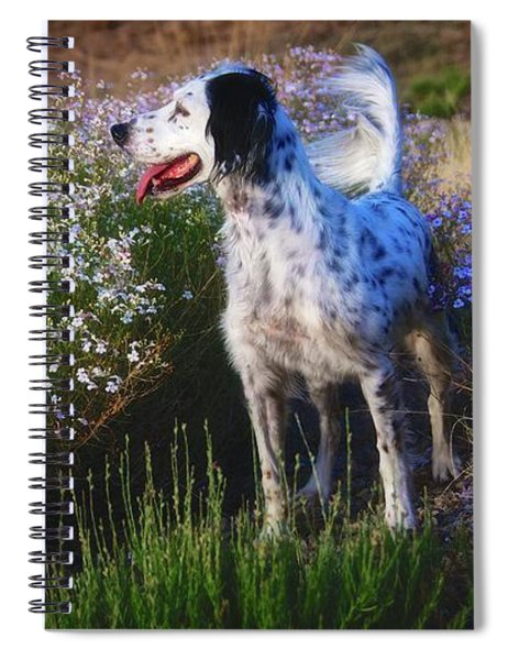 Ready To Chase, English Setter Spiral Notebook