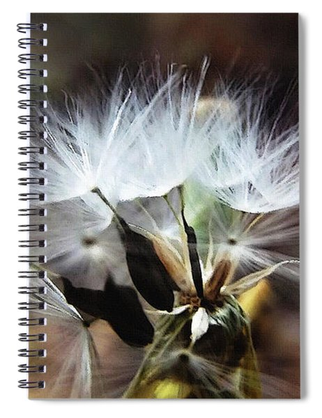 Ready To Fly... Salsify Seeds Spiral Notebook