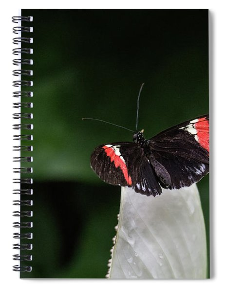 Ready To Launch Spiral Notebook