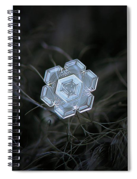Real Snowflake - 29-jan-2018 - 1 Spiral Notebook