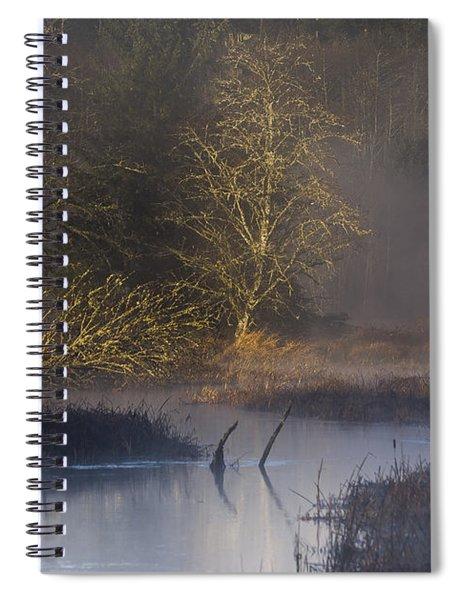 Red Alder Along Colewort Creek Spiral Notebook