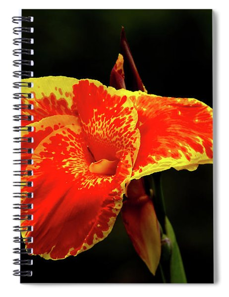 Red And Yellow Single Flower Spiral Notebook