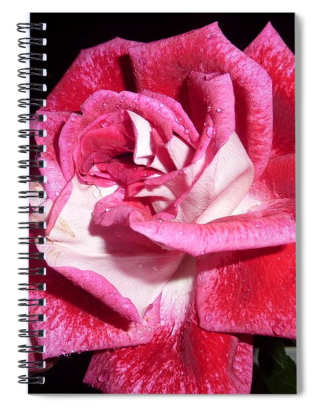 Red Beauty 3 - Love Spiral Notebook