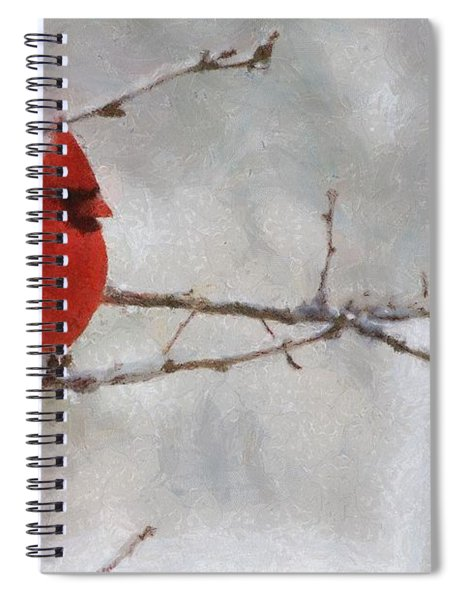Red Bird Of Winter Spiral Notebook