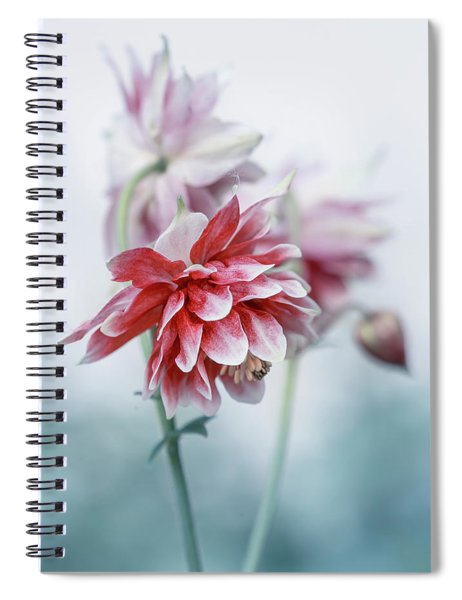 Red Columbines Spiral Notebook