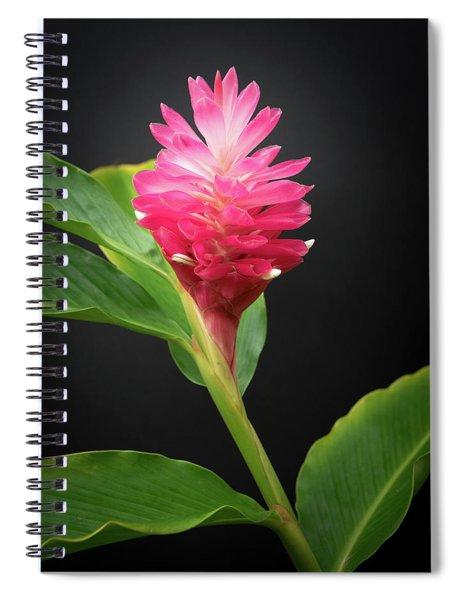 Red Ginger Spiral Notebook