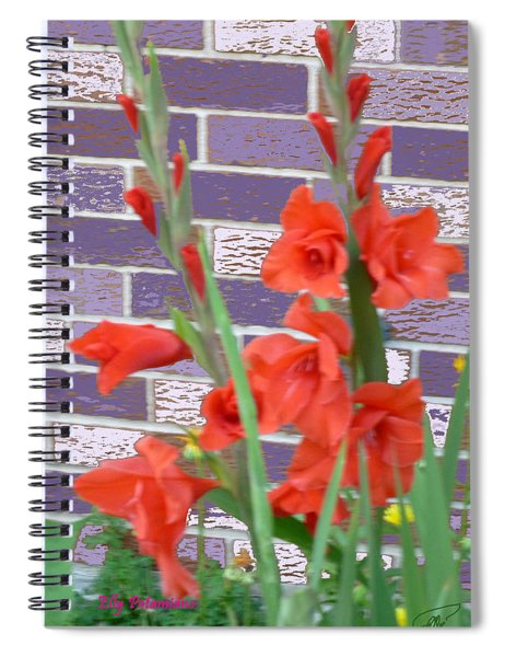 Red Gladiolas Spiral Notebook
