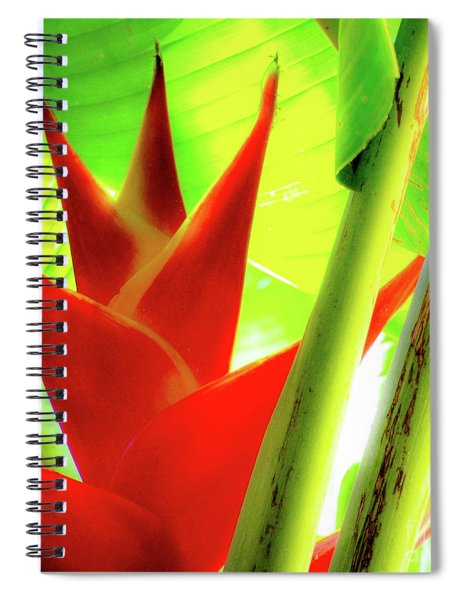 Red Heliconia Plant Spiral Notebook