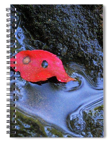 Red Leaf On Rock Spiral Notebook