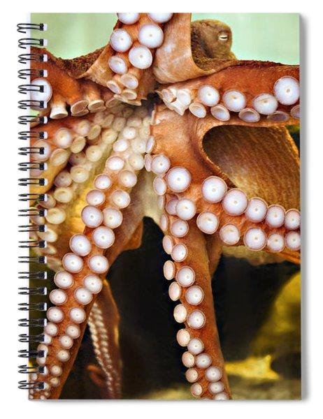 Red Octopus Spiral Notebook