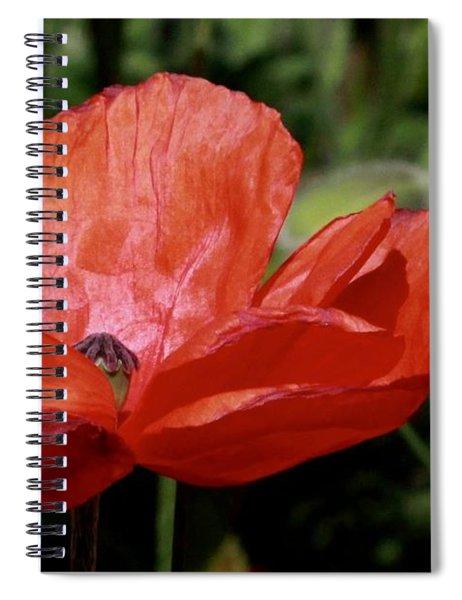 Red Poppy Spiral Notebook