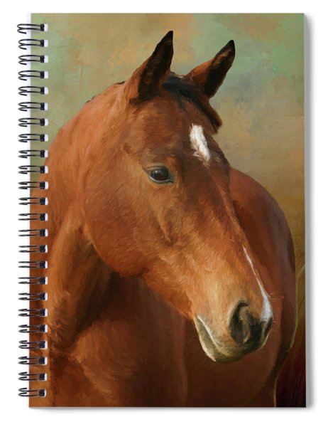 Red River - Painted Spiral Notebook