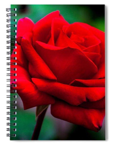 Red Rose 2 Spiral Notebook