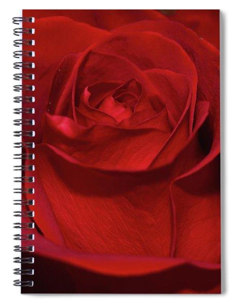 Red Rose Spiral Notebook