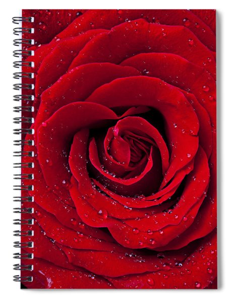 Red Rose With Dew Spiral Notebook