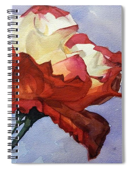 Watercolor Of A Red And White Rose On Blue Field Spiral Notebook