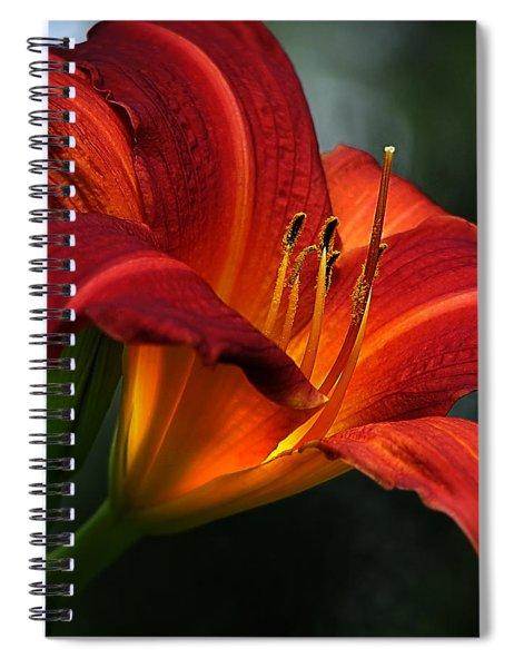 Red Seduction 2 Spiral Notebook