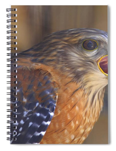 Red Shoulder Hawk Spiral Notebook