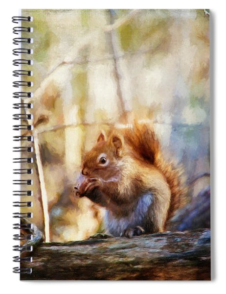 Red Squirrel With Pinecone Spiral Notebook