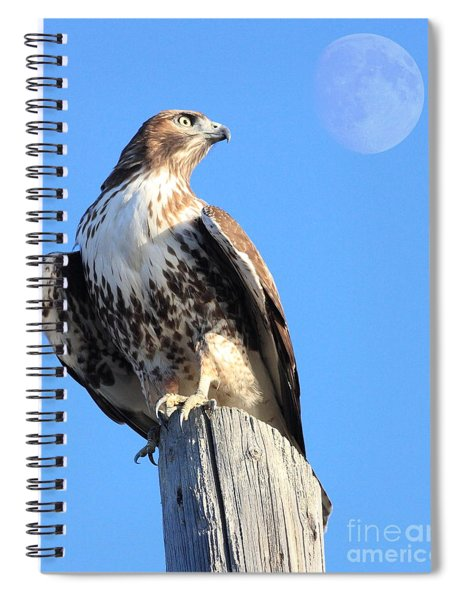 Red Tailed Hawk And Moon Spiral Notebook