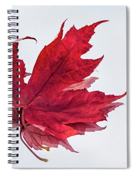 Red Threads Spiral Notebook