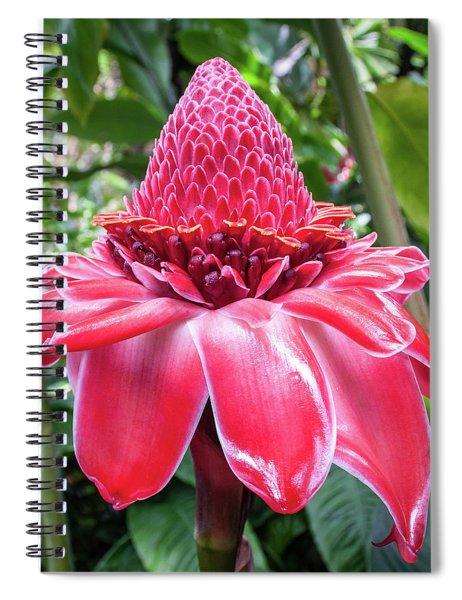 Red Torch Ginger Flower Spiral Notebook