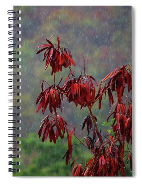 Red Tree In The Rain Spiral Notebook