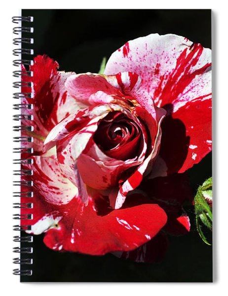 Red Verigated Rose Spiral Notebook