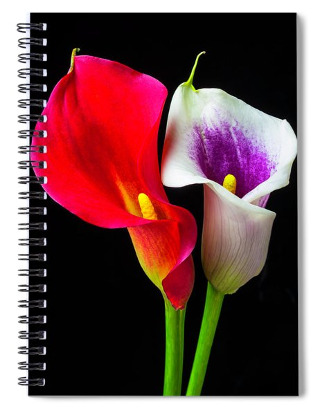 Red White And Purple Calla Lilies Spiral Notebook