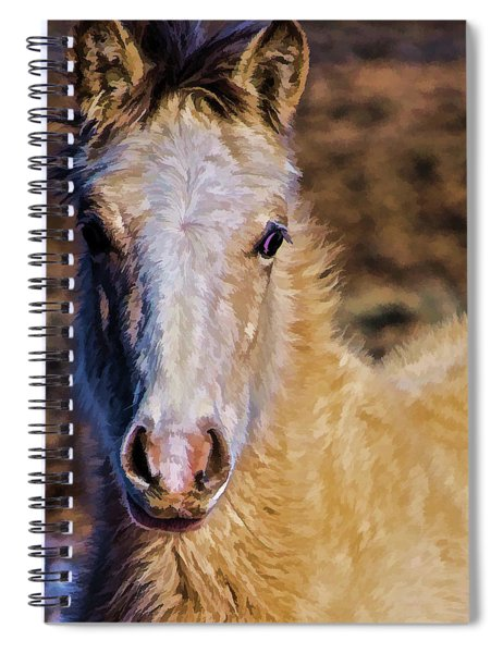 Red Willow Pony Spiral Notebook