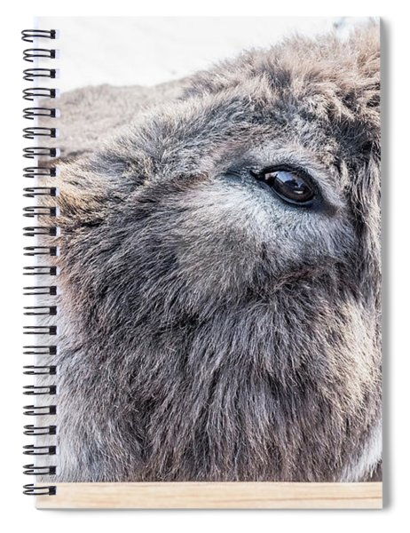 Reflected In His Eye Spiral Notebook