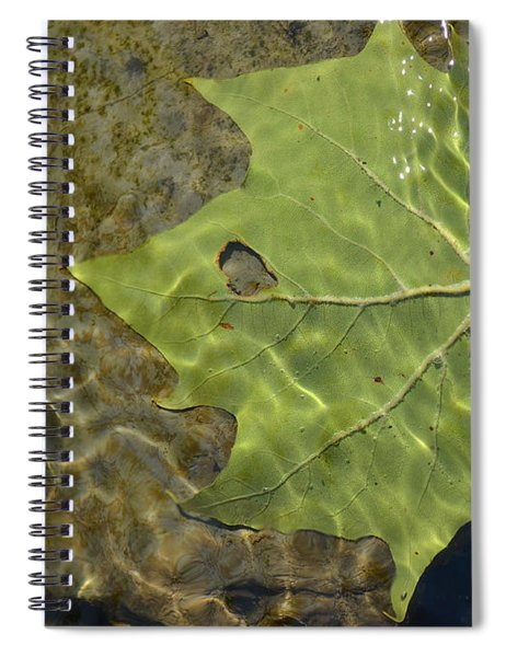 Reflected Indignation Spiral Notebook