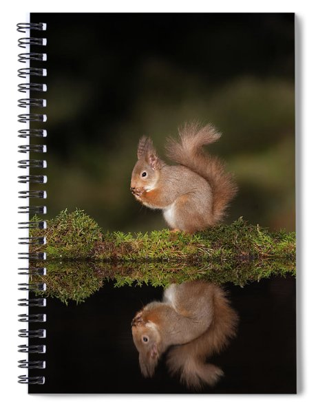 Reflected Red Squirrel Spiral Notebook
