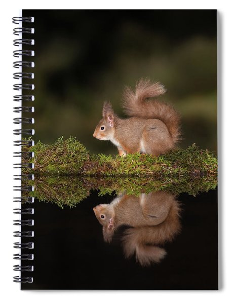 Reflecting On What To Eat Spiral Notebook