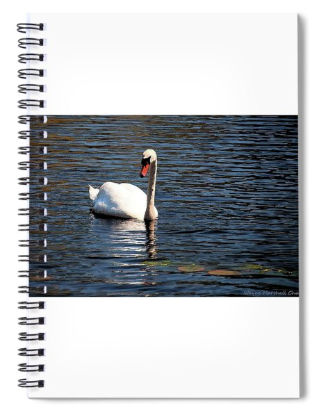 Reflecting Swan Spiral Notebook