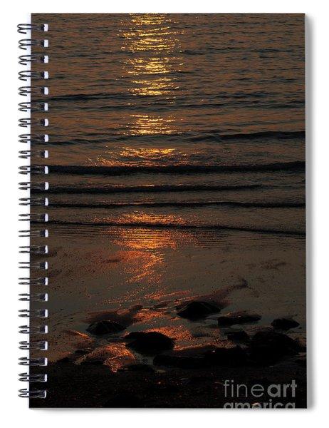 Reflection  Spiral Notebook