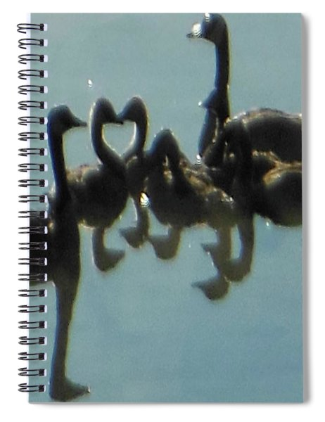 Reflection Of Geese Spiral Notebook