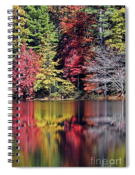 Reflections Of A Bare Tree Spiral Notebook