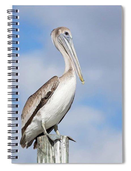 Regal Bird Spiral Notebook