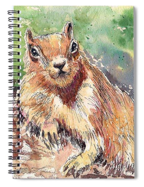 Relaxing Squirrel Spiral Notebook