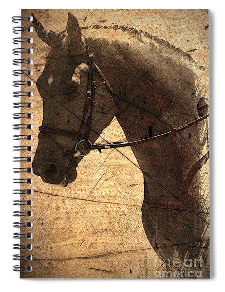 Remembering Spiral Notebook