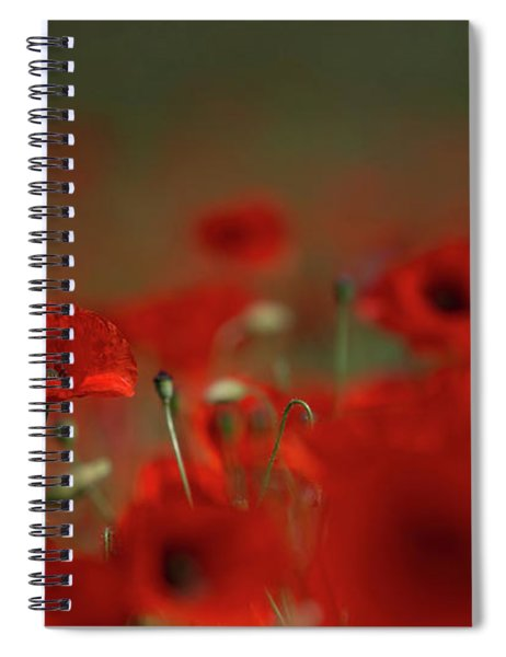 Remembering Poppies Spiral Notebook